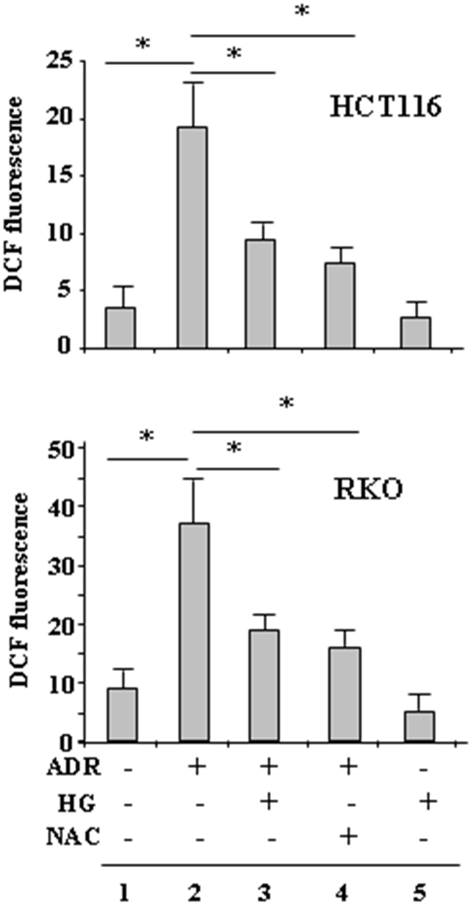 HG reduces ADR-induced ROS generation.