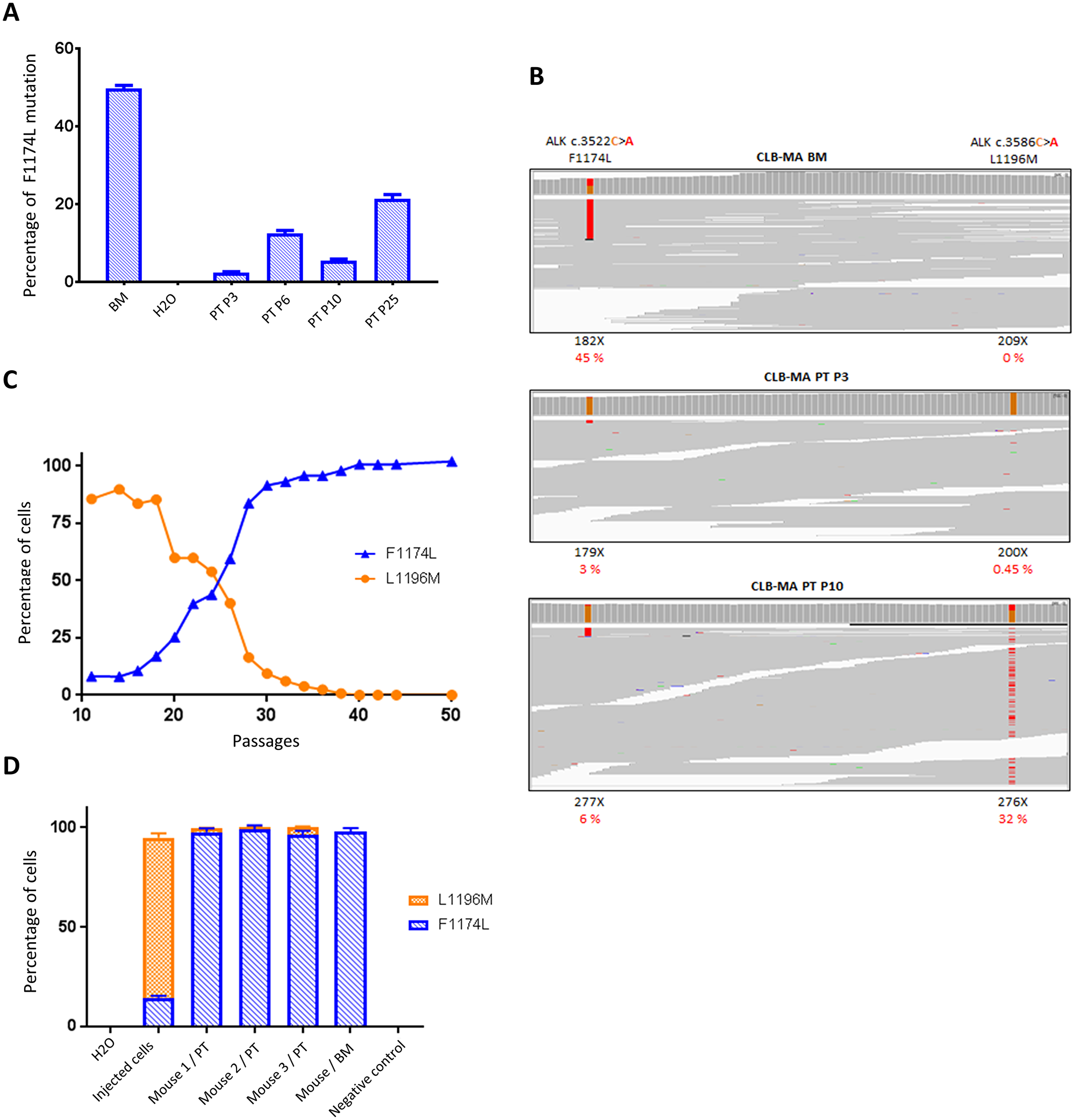 Identification of a second ALK mutation (L1196M) in CLB-MA PT and dynamics of subclone growth in vitro and in vivo.