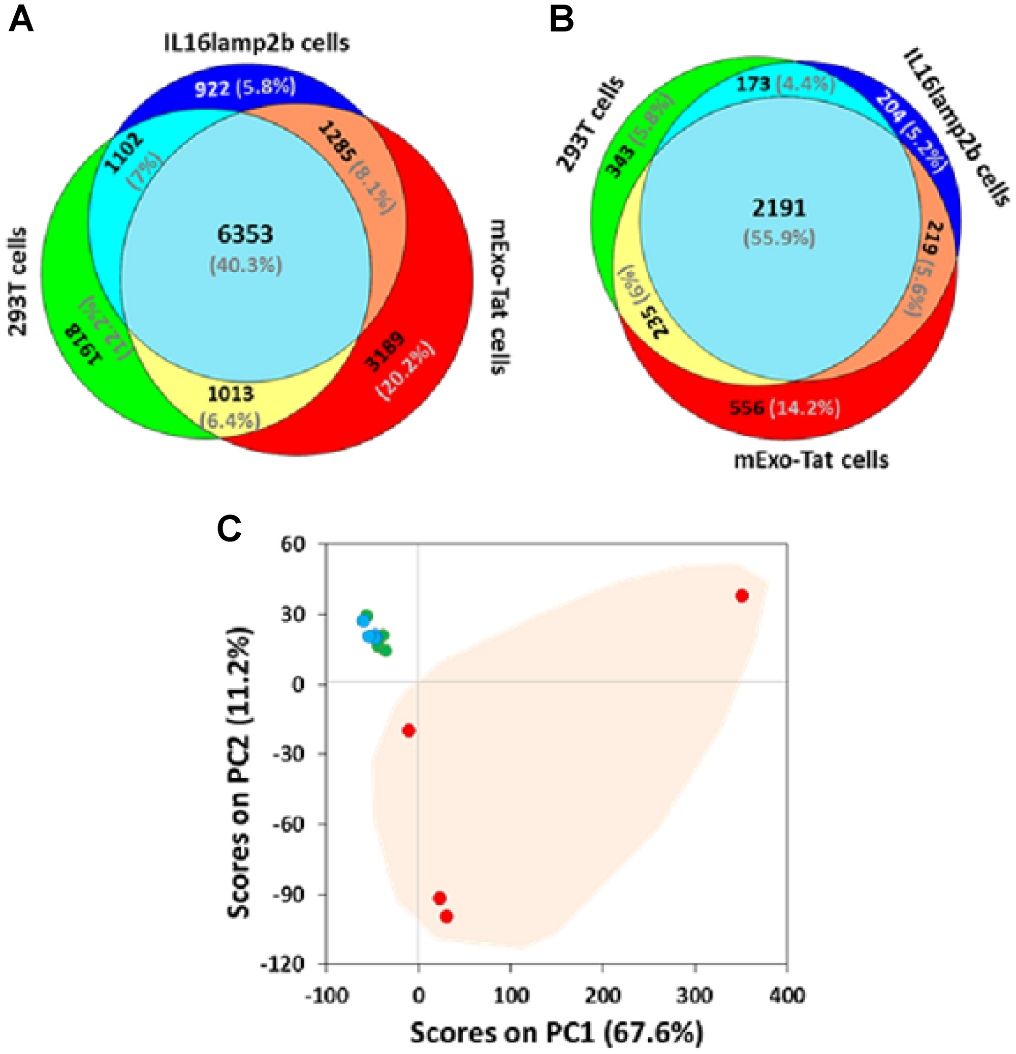 Comparative proteomic profiling of the peptides/proteins identified from 293T, IL16lamp2b and mExo-Tat samples.