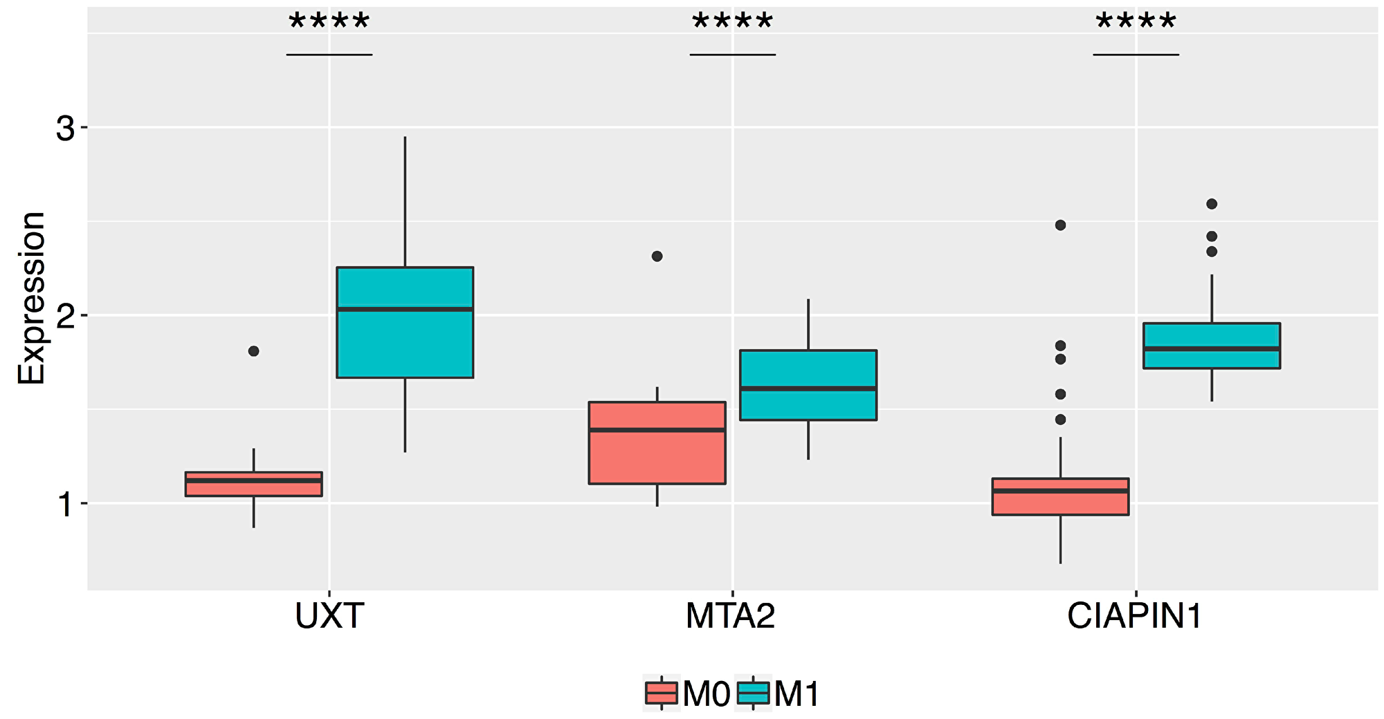 Box plots of the normalized relative expression of the UXT, MTA2, and CIAPIN1 proteins in the gastric tumor tissue of patients without metastasis (M0) and with metastasis (M1) (****P < 0.0001).