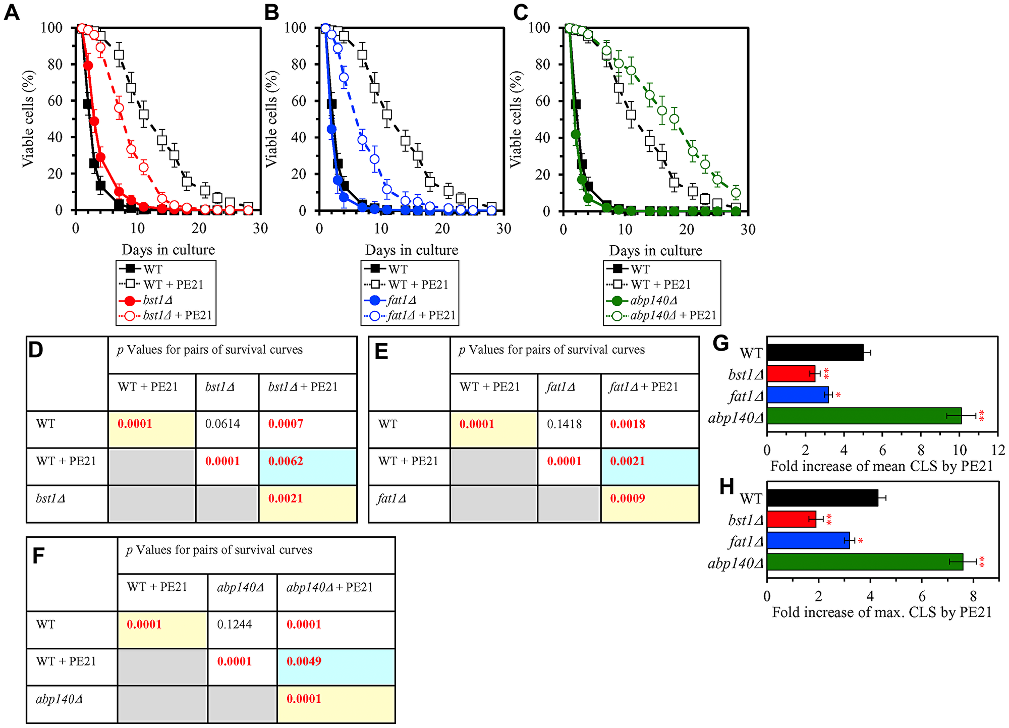 Single-gene-deletion mutations eliminating proteins that are upregulated by both PE21 and UPRER stimuli decrease the efficiency with which PE21 extends yeast longevity, while a single-gene-deletion mutation eliminating a protein that is downregulated by both PE21 and UPRER stimuli increases such efficiency.