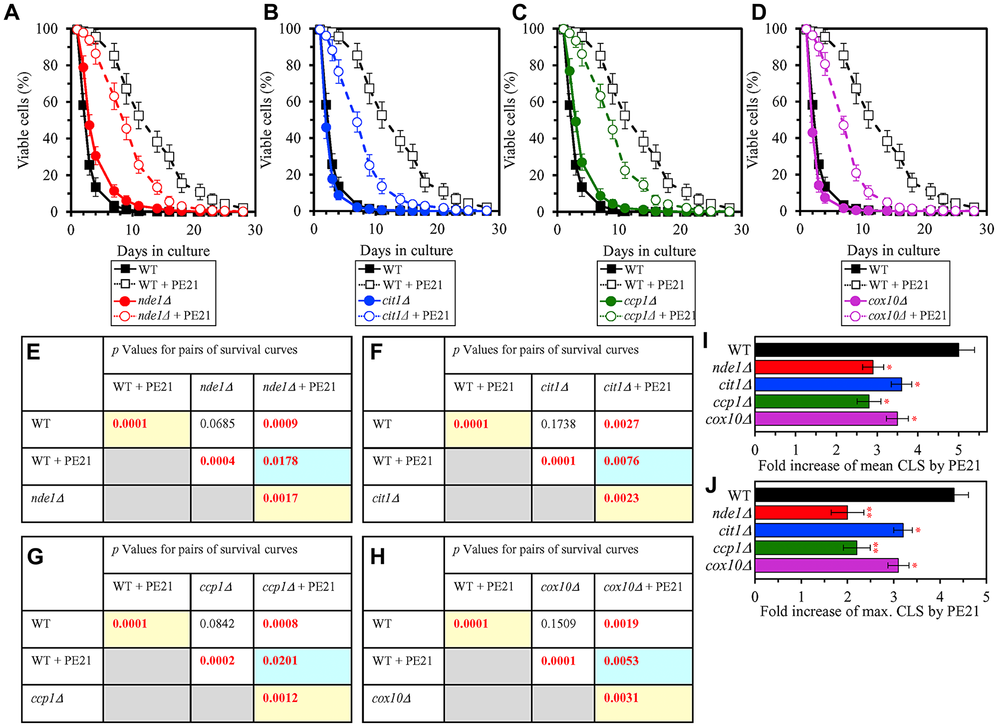 Single-gene-deletion mutations eliminating mitochondrial proteins that are upregulated by PE21 reduce the geroprotective potential of PE21.