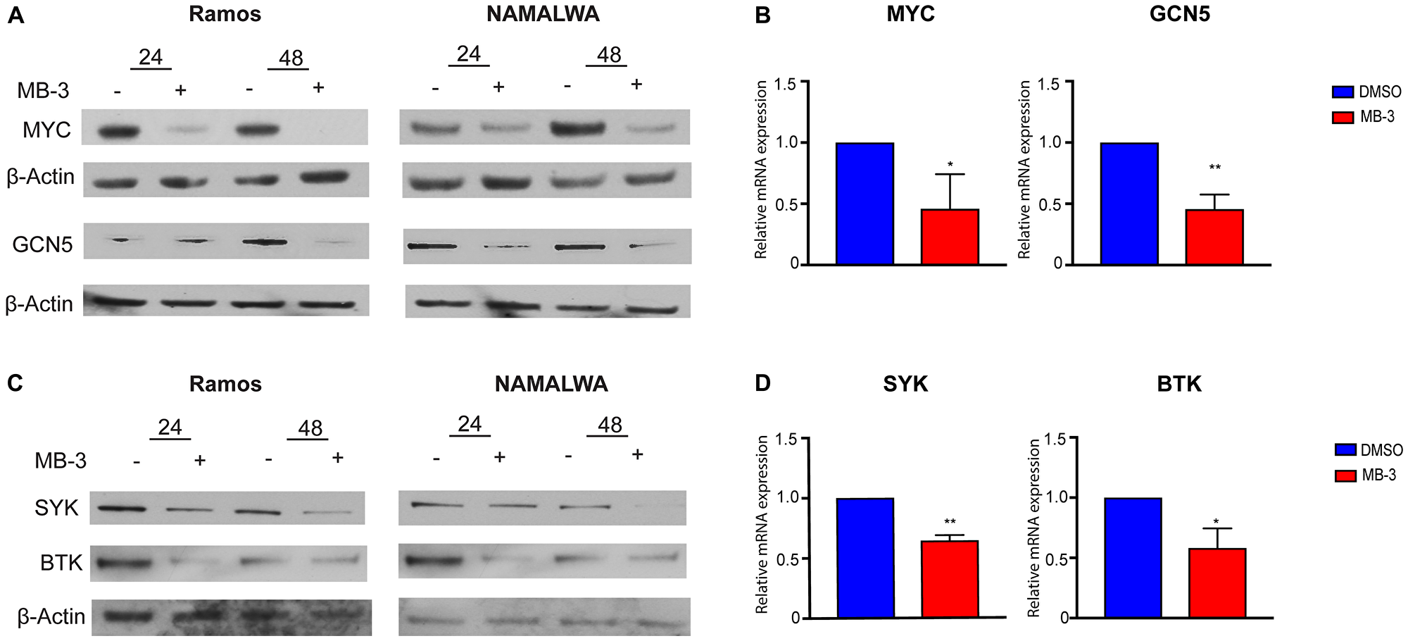 MYC target genes downregulated upon inhibition of GCN5/PCAF HAT activity.