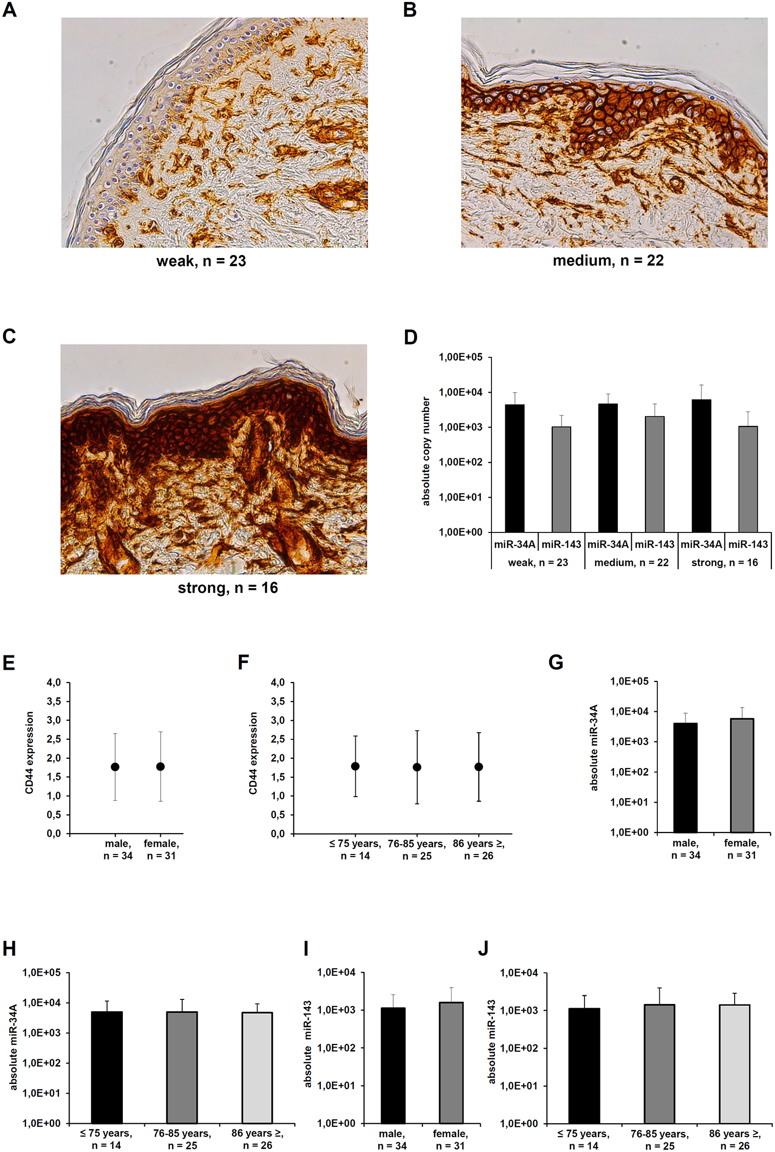 Differential CD44s expression in healthy skin sections.