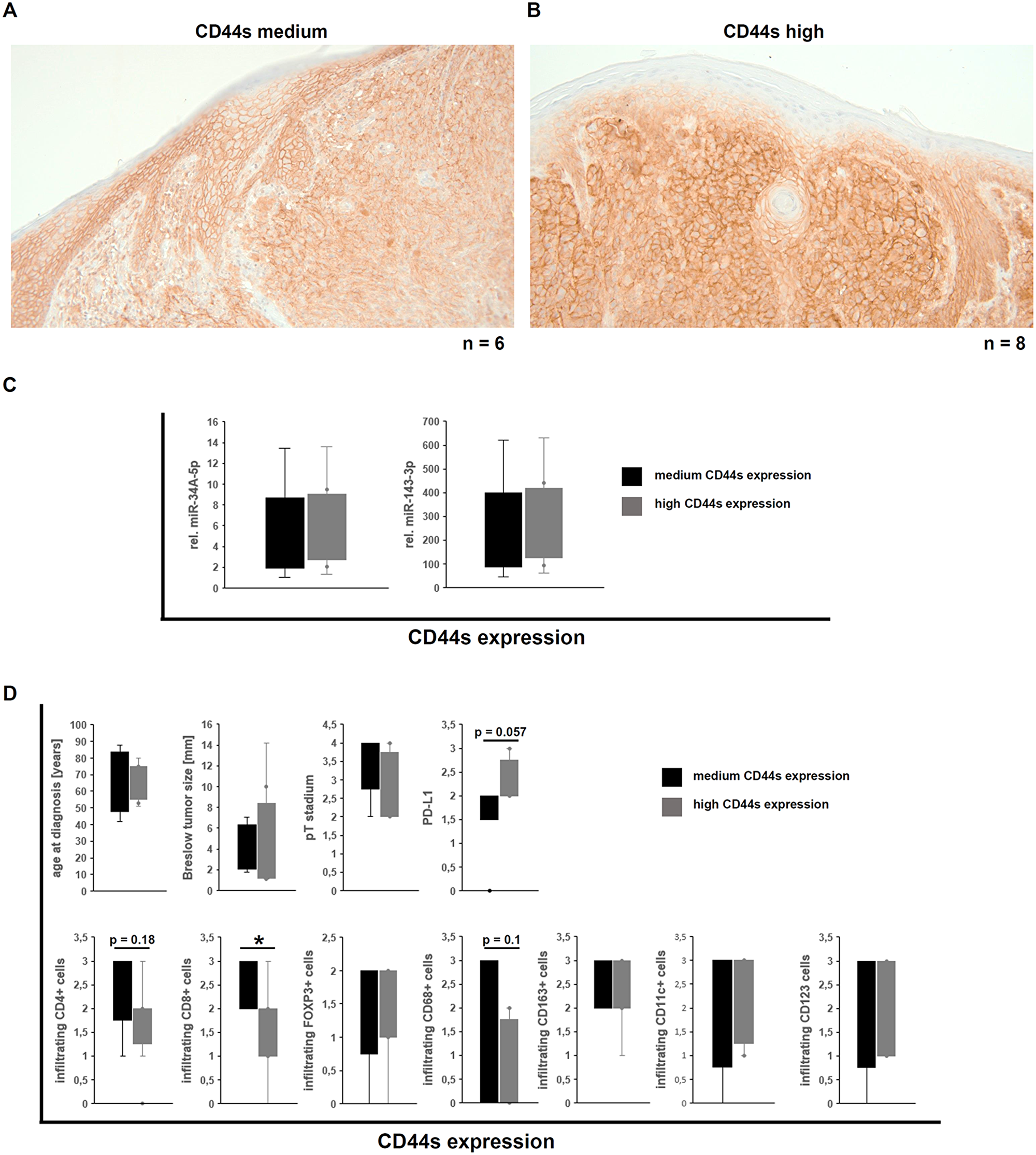 Correlation of the CD44s expression in human malignant melanoma with miR expression and immune cell infiltration and its tumor biological impact.