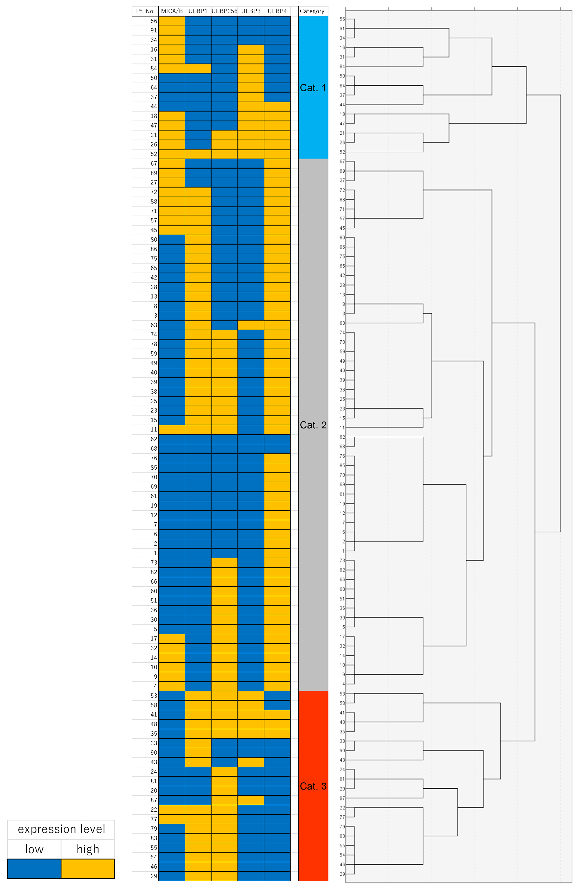 Heat map of immunohistochemical protein expression of MICA/B, ULBP1, ULBP2/5/6, ULBP3, and ULBP4 in the cluster map.