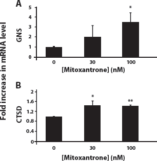 Exposure of MCF-7 cells to mitoxantrone induces an increase in gene expression of the established lysosomal enzyme markers GNS and CTSD.