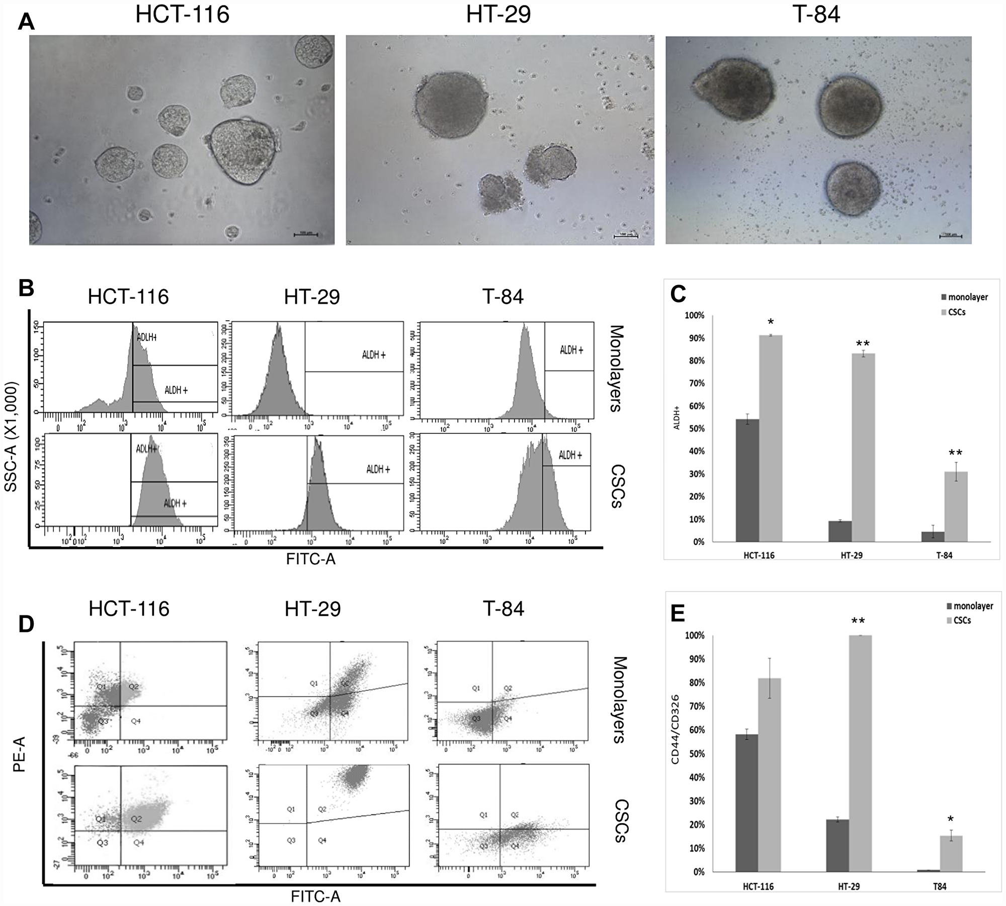 CSC enrichment of HCT-116, HT-29 ad T-84 cells and flow cytometric analyses of ALDH1 and CD44/CD326.