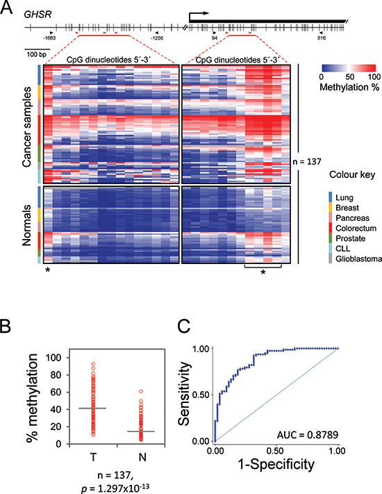 GHSR methylation pattern, average methylation degree and ROC curve analysis in seven common malignancies and respective normal tissue.