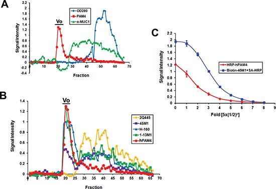 Immunoreactivity of fractions eluted from Sepharose CL-2B.
