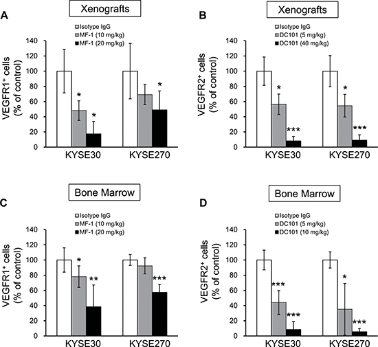 Flow cytometric analysis of percentage of VEGFR1+ and VEGFR2+ cells in tumor xenografts and bone marrow.