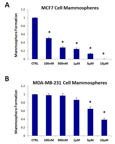 The mitochondrial ATP synthase inhibitor oligomycin A significantly reduces mammosphere formation in both MCF7 and MDA-MB-231 cells.