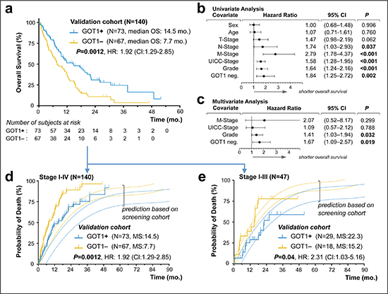 Validation of GOT1 expression status as an independent prognostic biomarker in pancreatic ductal adenocarcinoma.