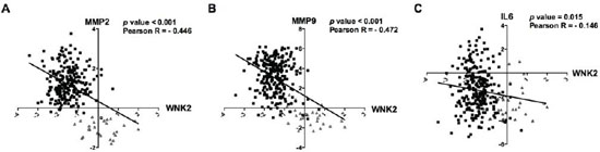 In silico validation of inverse correlation of WNK2 with MMP2, MMP9, and IL-6 in gliomas.
