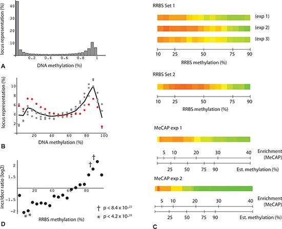 Bimodal distribution and change in DNA methylation levels.