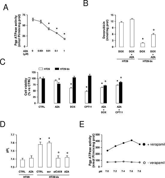Effects of acetazolamide on Pgp activity, chemosensitivity and intracellular pH in chemoresistant cancer cells.