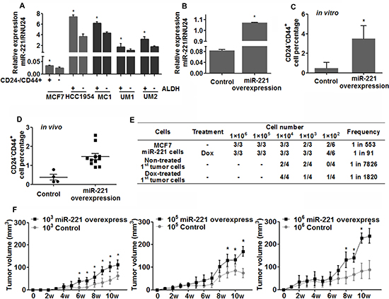 Expression of miR-221 and its role in regulating breast cancer stem-like cells.