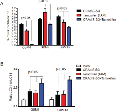 Effect of Tamoxifen on CRAd-S-5/3 oncolysis of CMV positive patient derived glioma stem cells.