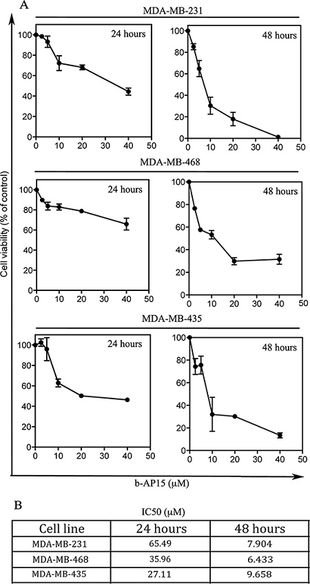 Effect of b-AP15 treatment on TNBC cell viability.