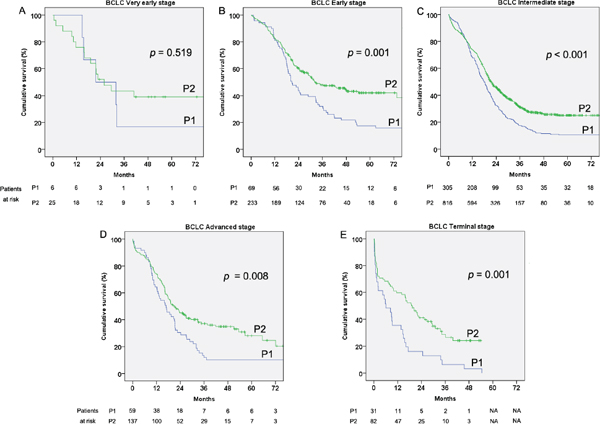 Cumulative survival of the hepatocellular carcinoma (HCC) patients by Barcelona clinic liver cancer (BCLC) staging classification in the two considered periods 2002–2006 (P1) and 2007–2011 (P2).