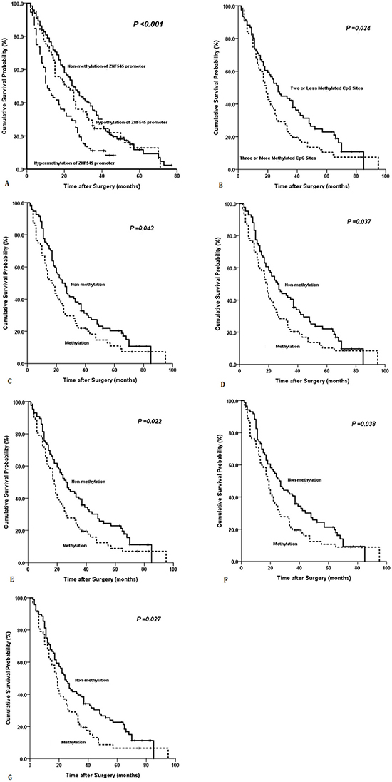 Kaplan-Meier survival curves comparing months of survival in gastric cancer patients are shown for