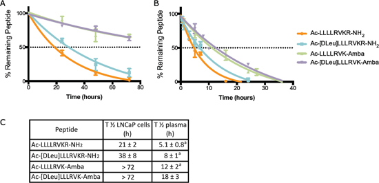 Stability of peptidomimetic inhibitors.