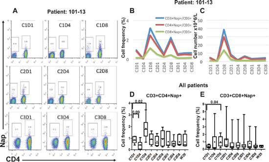 Flow cytometric and overall plots showing the percentage of Nap-specific CD4+ and CD8+ (CD3+CD4−) T cells in PBMCs of patients pre- and several time points after start of Nap treatment.