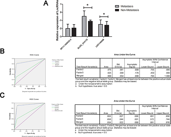RT-qPCR and ROC curve analysis for predicting lncRNAs as a HCC metastasis biomarker.