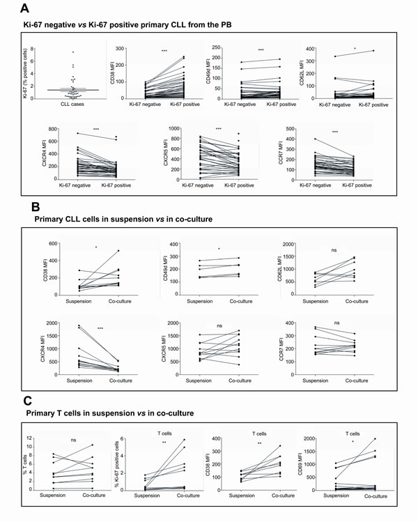 The co-culture of primary CLL cells with BMSC, CD40L and CpG ODN promotes an immunophenotype comparable to that from proliferating CLL cells found in PB.