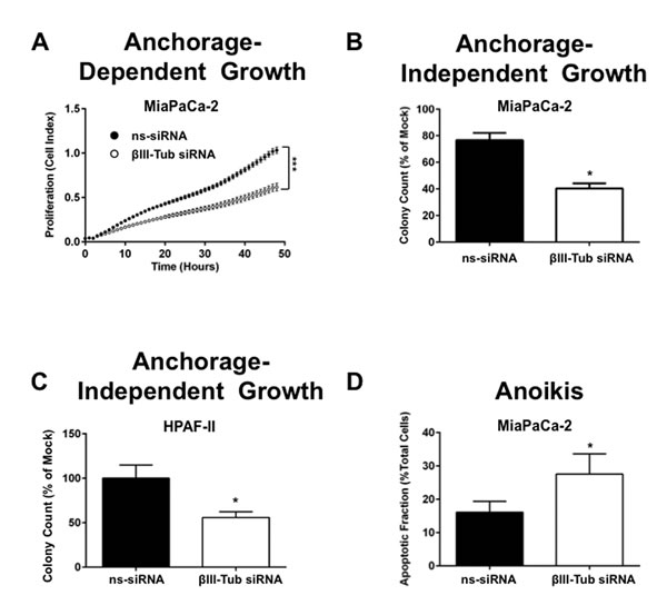 FIGURE 6: βIII-tubulin silencing reduces both anchorage dependent and independent pancreatic cancer cell growth.