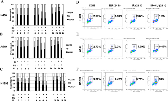 NU7441 treatment results in a robust G2/M cell arrest in NSCLC cells and specifically leads to checkpoint adaptation in H1299 cells.