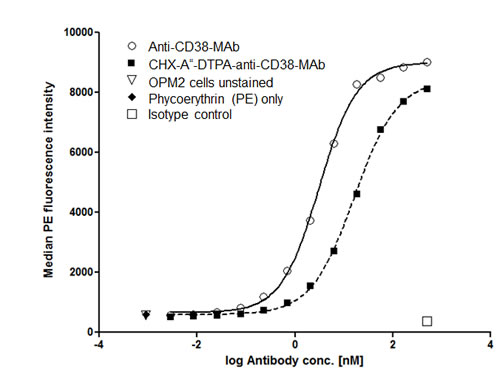 Binding affinity of native and chelated anti-CD38-MAb.
