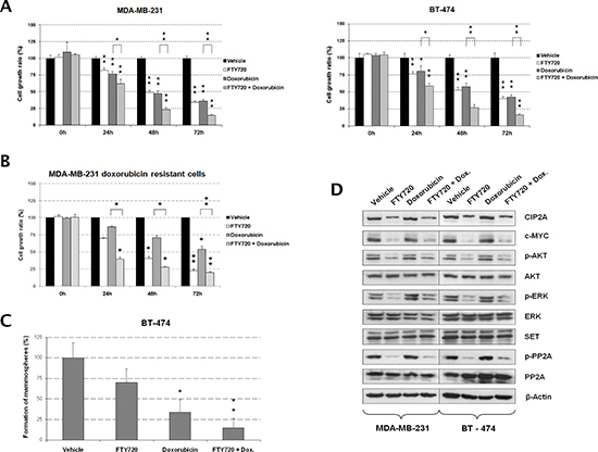 FTY720-induced PP2A activation potentiates antitumor effects of doxorubicin in breast cancer cells.