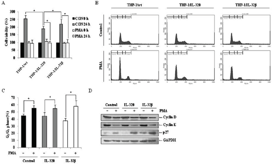 Effects of IL-32θ and IL-32β on PMA-mediated cell cycle arrest in THP-1 cells.