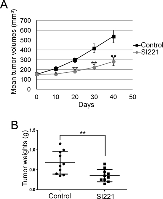 SI221 reduces RMS cell growth in xenotrasplanted mice.