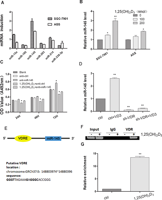 1,25(OH)2D3 induces miR-145 expression in gastric cancer cells.