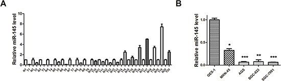 miR-145 is underexpressed in GC tissues and cell lines.