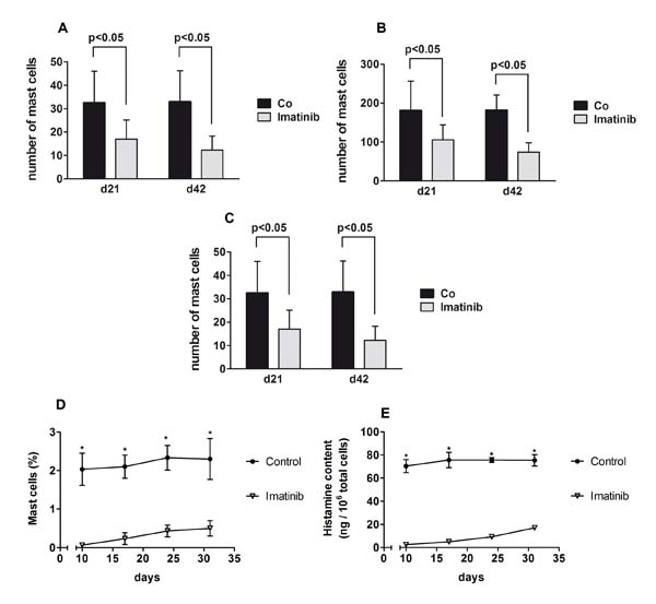 Effects of imatinib on mast cell (MC) numbers in C57BL/6J and BALB/c mice.