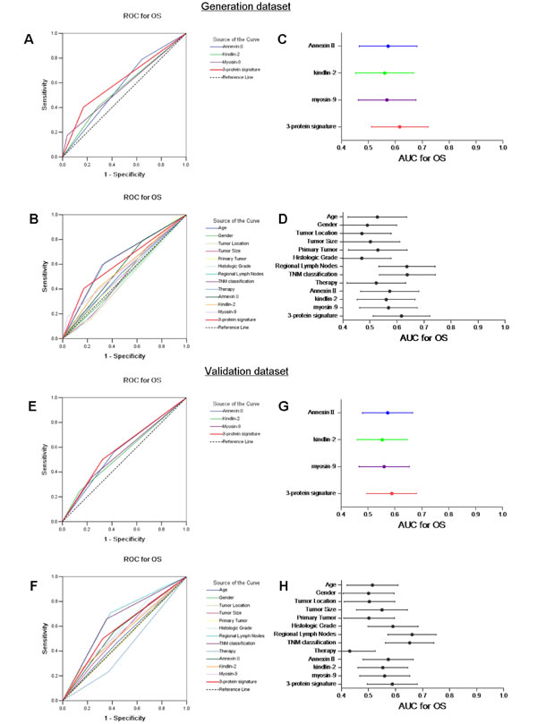 Predictive ability of the 3-protein signature model compared with single biomarkers and other clinical prognostic indices according to receiver operating characteristic (ROC) curves and areas under the curve (AUCs) with 95% CI in the generation dataset (A, B and C, D) and the validation dataset (E, F and G, H).