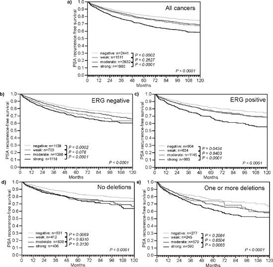 Impact of different levels of TYMS expression on PSA recurrence free survival in molecularly defined subsets of prostate cancer.