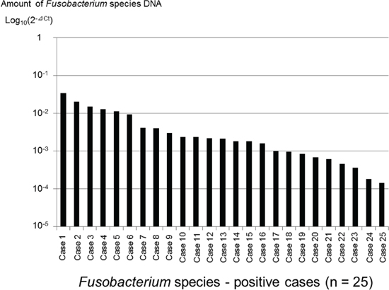 Distribution of Fusobacterium species-positive cases (n = 25) among pancreatic cancer tissue specimens.