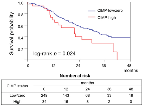 Kaplan–Meier curves of cancer-specific survival of patients with pancreatic cancer according to CpG island methylator phenotype (CIMP) status.