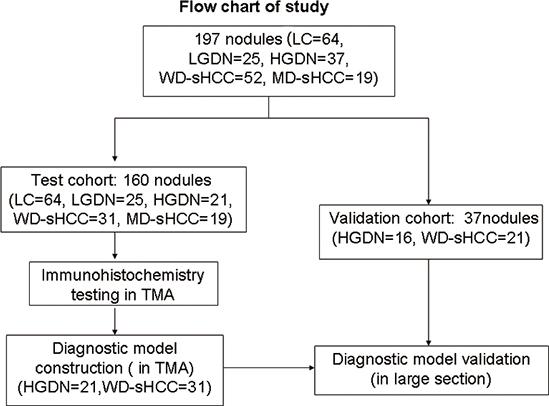 Flow chart of nodule enrollment.