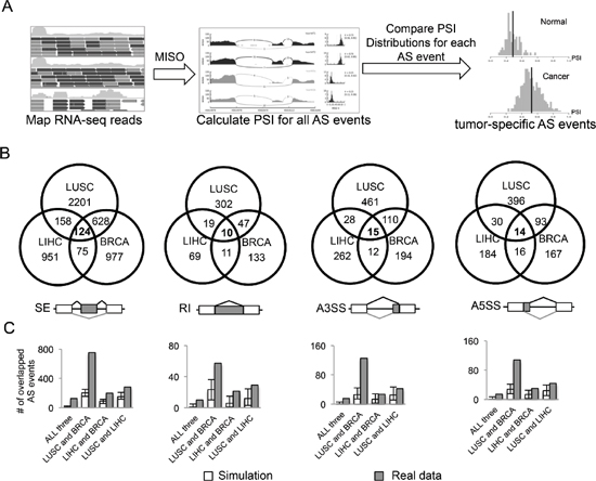 Identification of AS events altered in cancers.