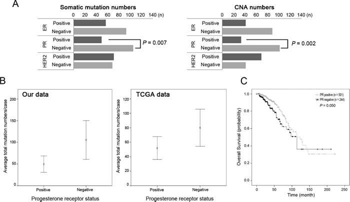 Somatic mutations and copy number alterations according to the receptor status.