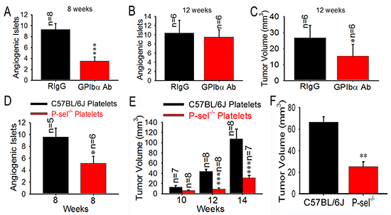 Role of platelet P-selectin in platelet accumulation and tumor growth.