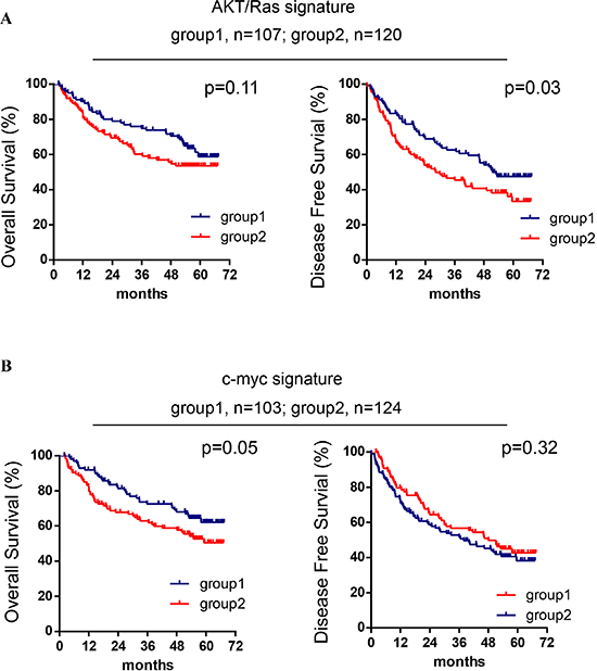 AKT/Ras and c-Myc mouse liver tumor signatures are related to patients' HCC prognosis.