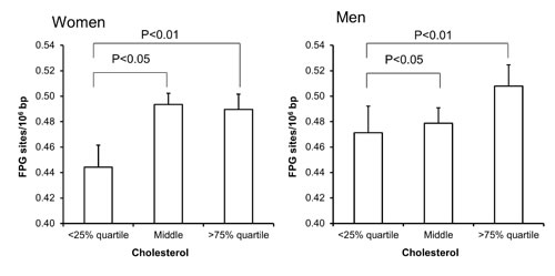 Levels of FPG-sensitive sites in PBMCs from subjects stratified in plasma cholesterol concentrations being less than the 25% quartile, middle or more the 75% quartile for the sex.