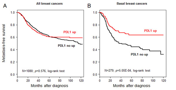 Metastasis-free survival according to PDL1 mRNA expression in the whole population and in basal breast cancers.