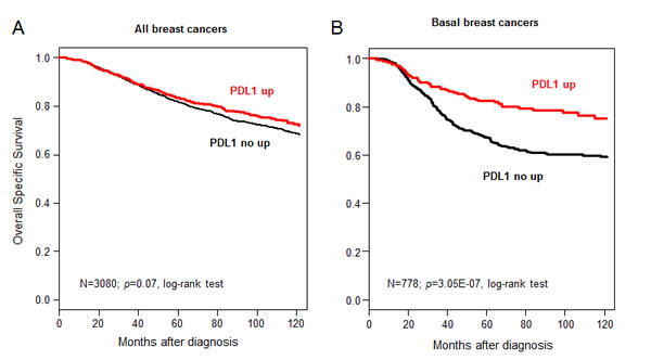 Overall specific survival according to PDL1 mRNA expression in the whole population and in basal breast cancers.